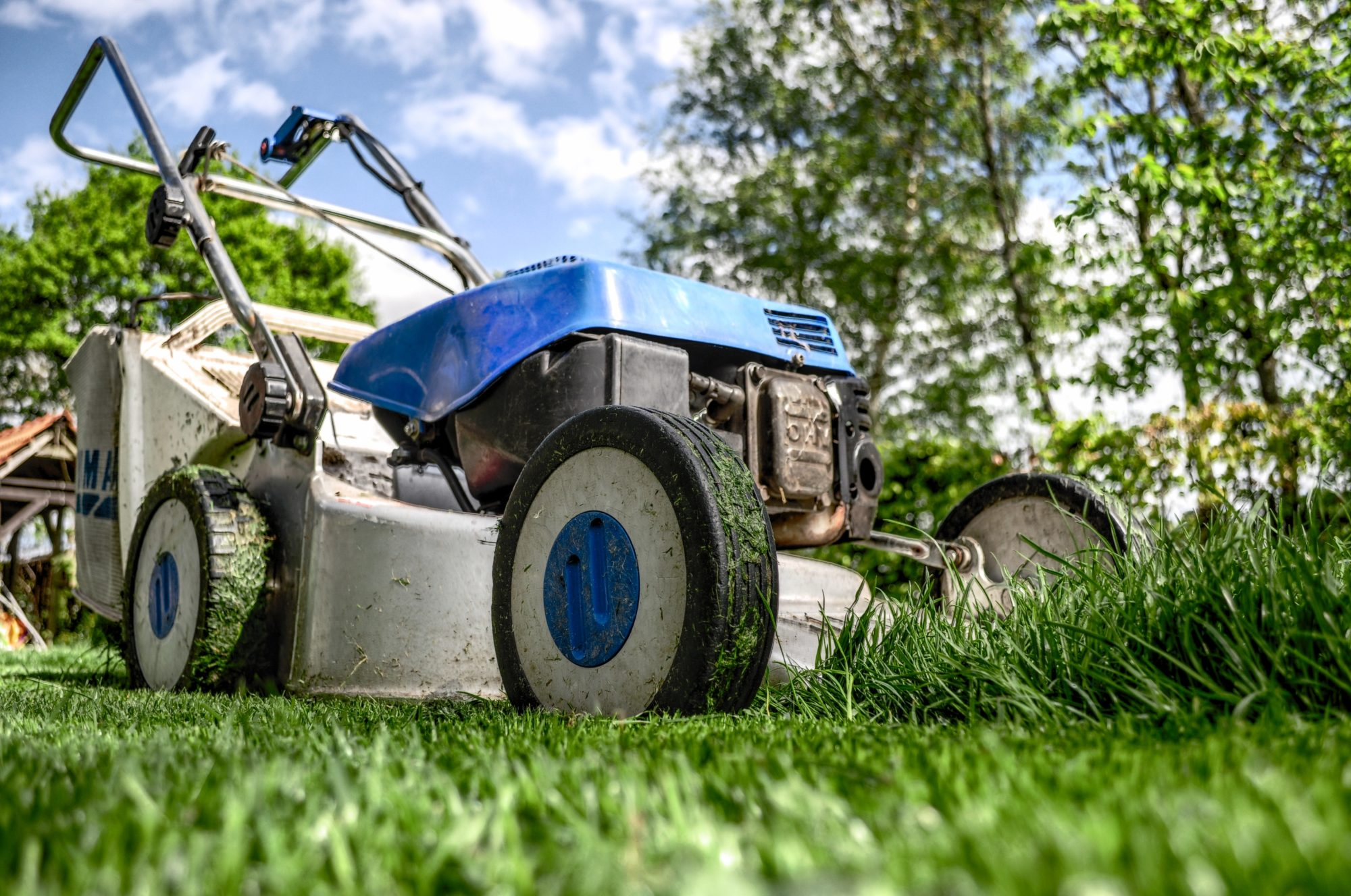 Check out the early spring lawn care tips for your Maryland home.