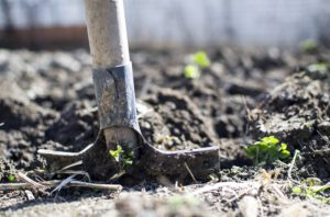 how to tell if you have compacted soil