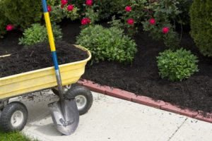 planning your spring lawn care checklist