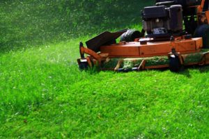 how to recycle grass clippings