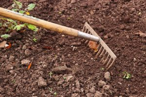 rake garden beds to prepare your landscape for fall