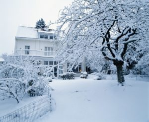 effects of snow on your lawn