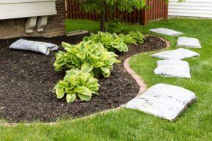 mulching best practices scientific plant service