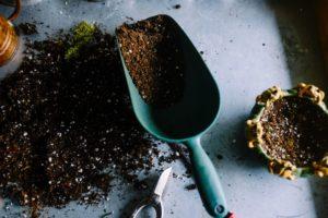 scientific plant service types of fertilizers