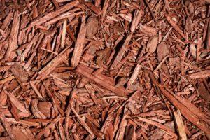 scientific plant service garden mulch