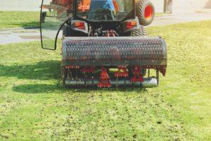 scientific plant service lawn drainage issues