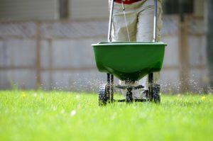 scientific plant service turn yellow grass green